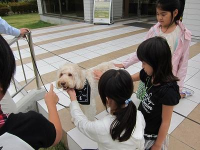 20111001nithi_01.jpg