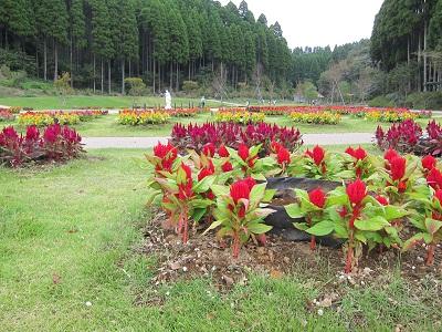 20111001nithi_07.jpg
