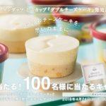 ハーゲンダッツ ミニカップ≪ダブルチーズケーキ≫ 発売記念キャンペーン